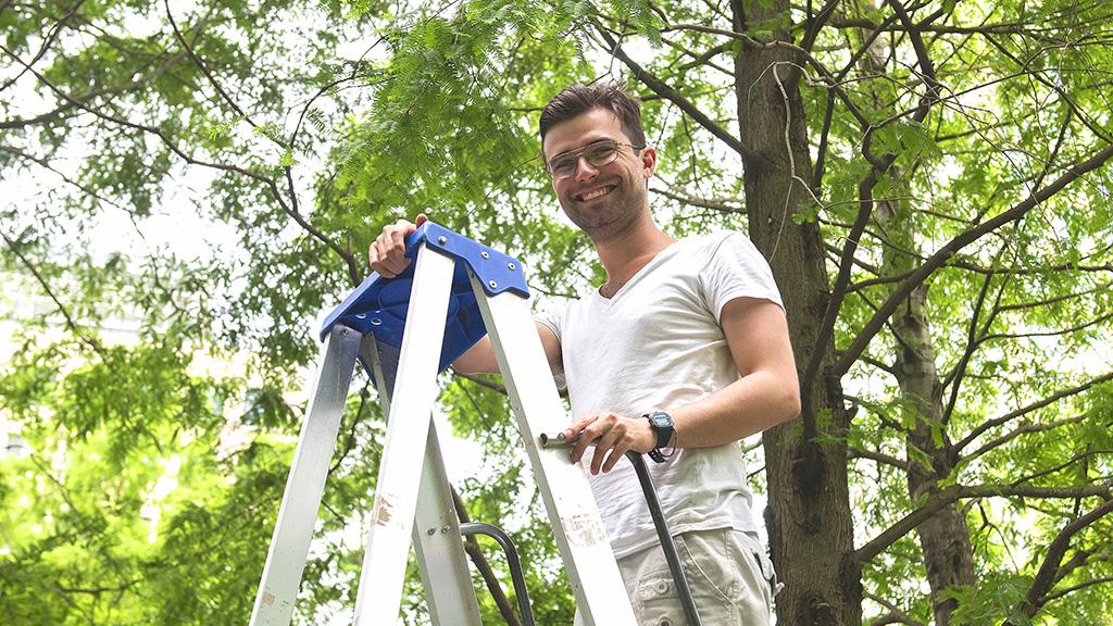 Image of Oli Savage on a step ladder